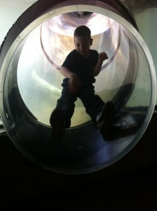 Jonathan finally slid down the tunnel. With a smile on his face.